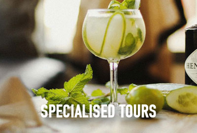 Gold Coast Food and Wine Tours Specialised Tours